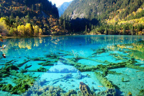Turquoise Lake, Jiuzhai Valley National Park, China