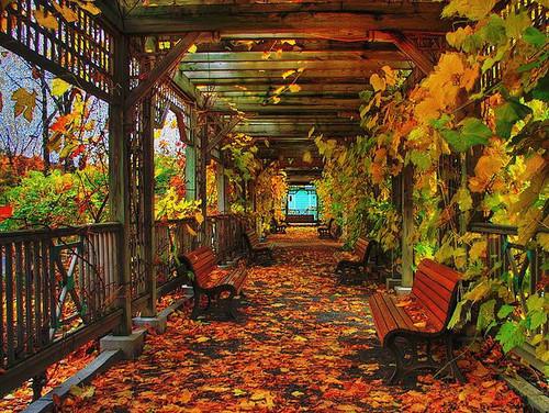 Botanical Garden, Montreal, Canada