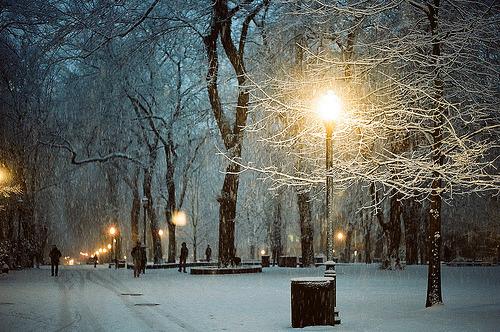 Snowy Night, Portland, Oregon