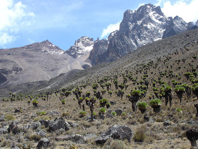 Mount Kenya 5199m is a stratovolcano, the highest mountain in Kenya and the second-highest in Africa, after Kilimanjaro. Mount Kenya is located in central Kenya, just...