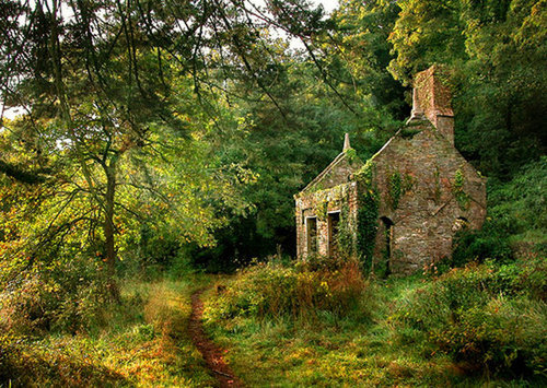 Ancient Abandoned House, Devon, England
