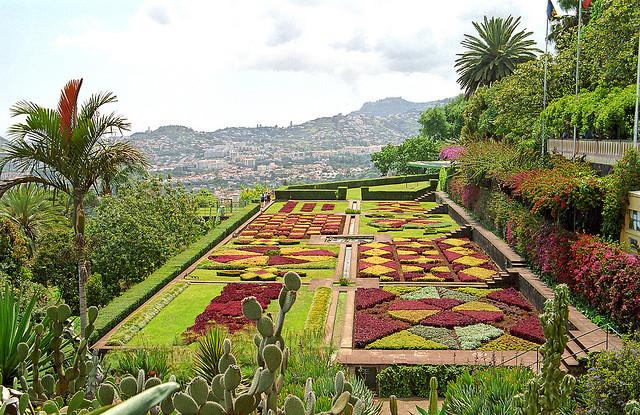 Funchal Botanic Garden - Madeira, Portugal.