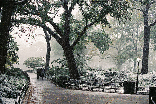 Snowy Day, New York City
