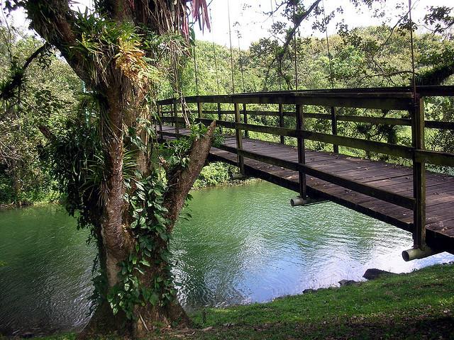 by Cristina Bruseghini de Di Maggio on Flickr.Parque Eco-Arqueologico Los Naranjos, Honduras.
