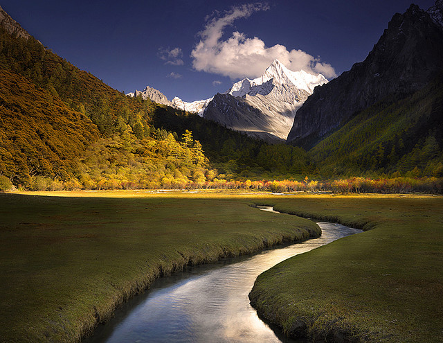 by AndersonImages on Flickr.A beautiful cold stream running through the meadows of Tibetan Himalayas.