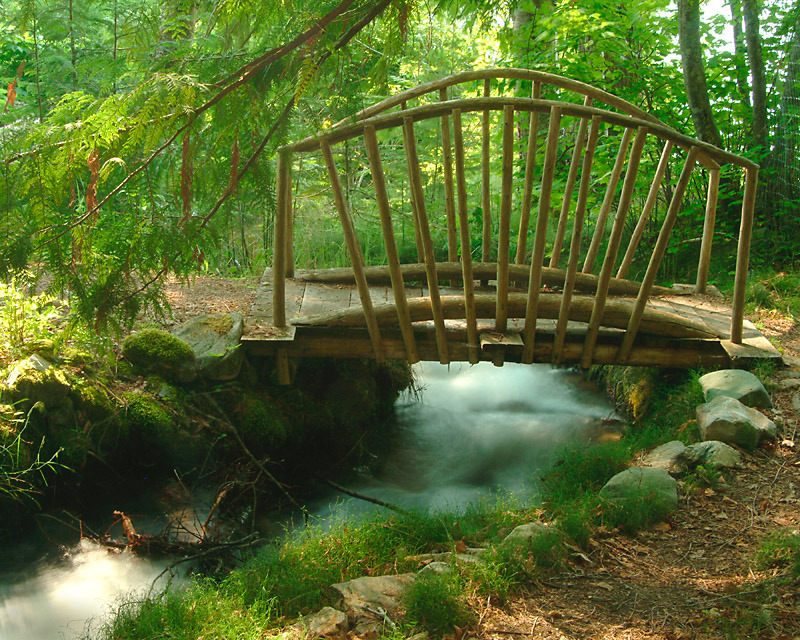 Small idyllic bridge in British Columbia, Canada