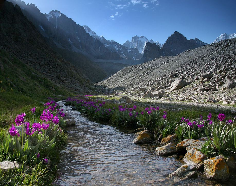Spring time in Tian Shan Mountains, Kyrgyzstan