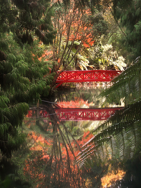Reflections in Pukekura Park, New Plymouth, New Zealand