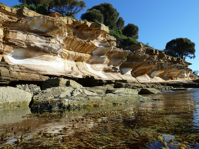 Painted Cliffs at low tide on Maria island, Tasmania, Australia