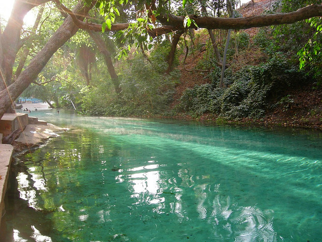 Wikki Warm Spring in Yankari National Park, Nigeria