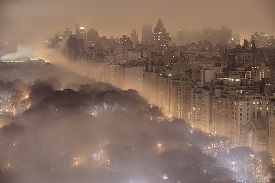 Foggy Night, Central Park, New York City