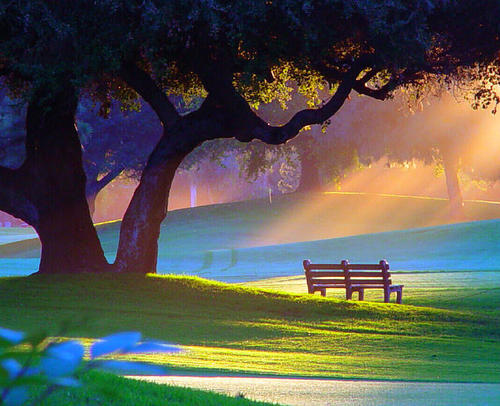 Summer Morning, Alpine Park, Rockford, Illinois