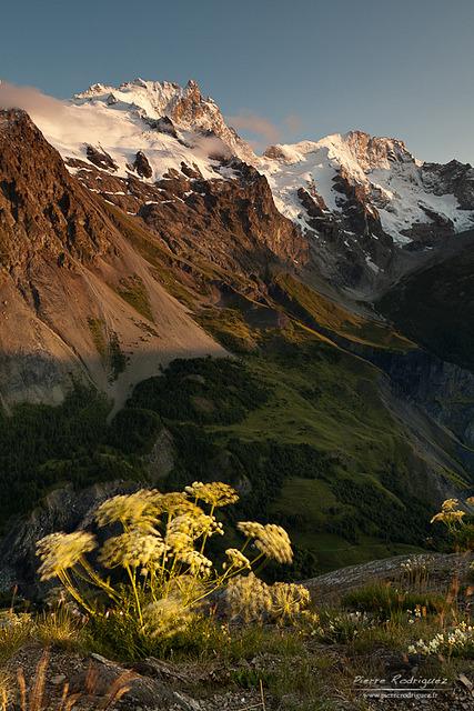 Petite brise du soir en Hautes Alpes, France