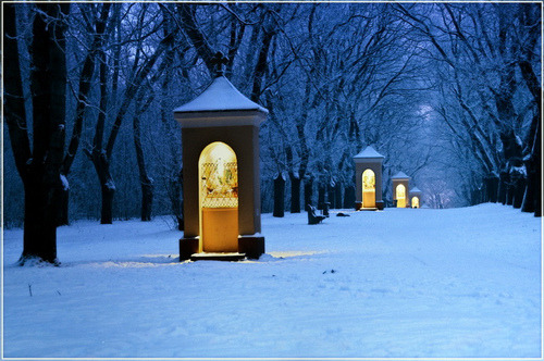 Winter's Night, Vac, Hungary