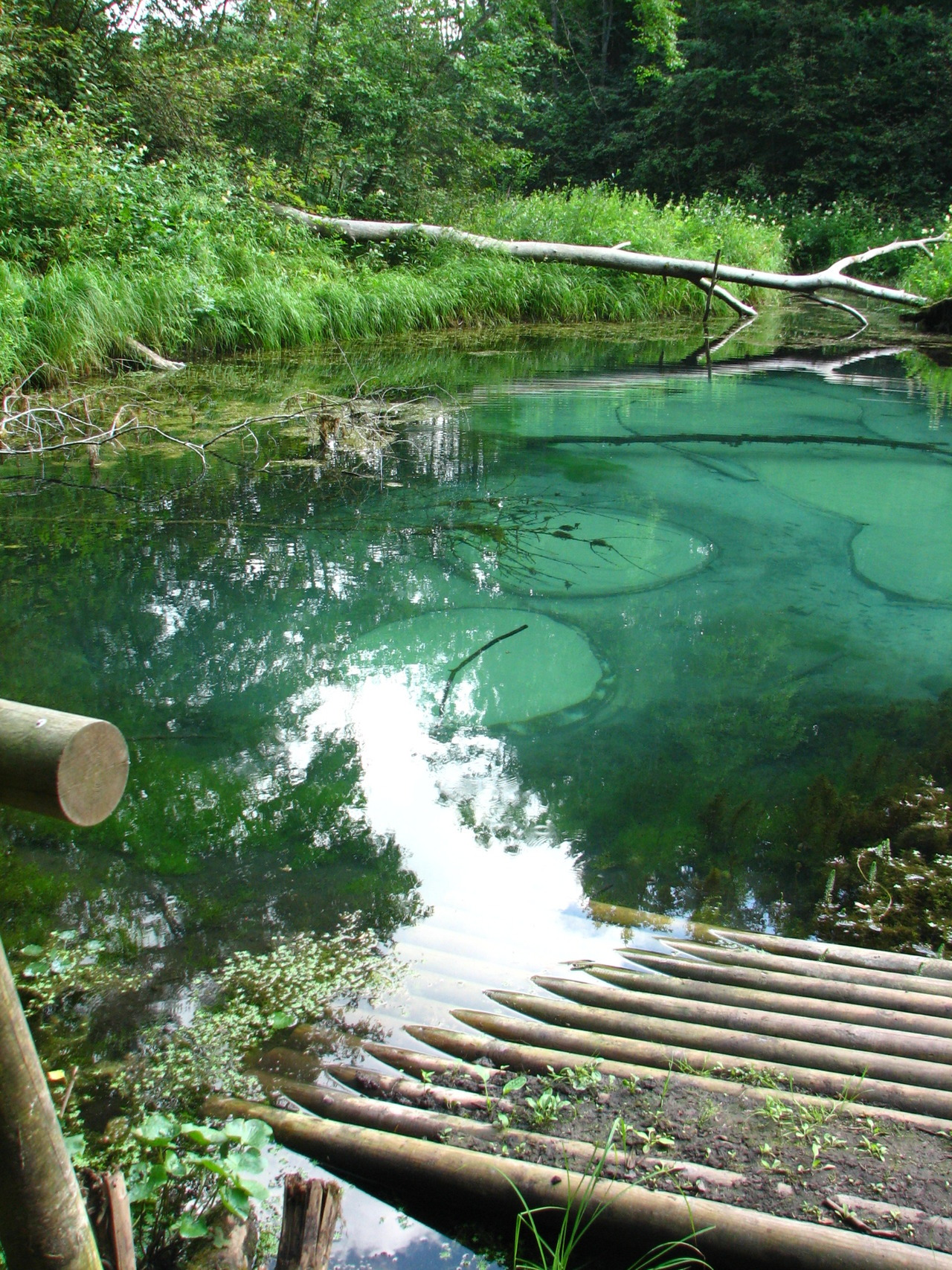 The Blue Springs of Saula, freshwater springs located in Harju County, northern Estonia.