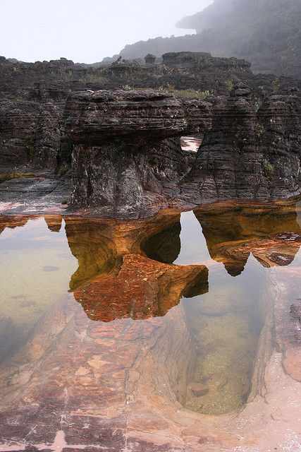 A clear reflective pool on top of Mount Roraima, Venezuela