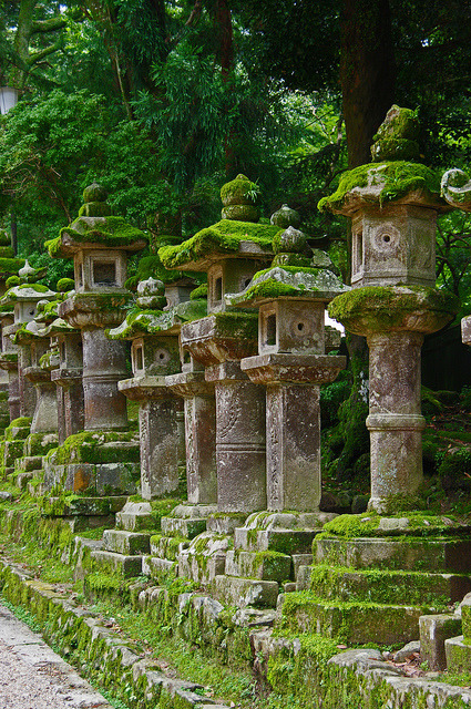 Stone lanterns at Kasuga Taisha Shrine in Nara, Japan