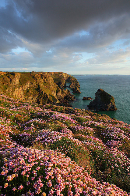 Bedruthan Steps in Cornwall, England
