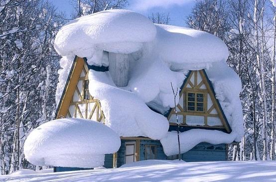 Snow Artistry, Whistler, Canada