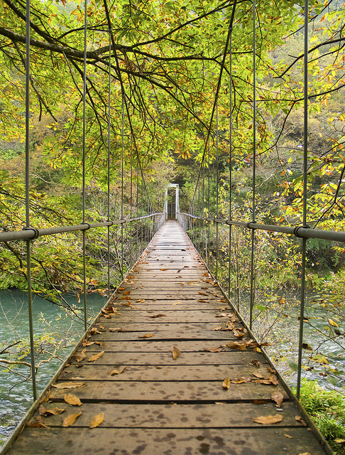 Bridge in Parque Nacional Fragas del Eume, Galicia, Spain