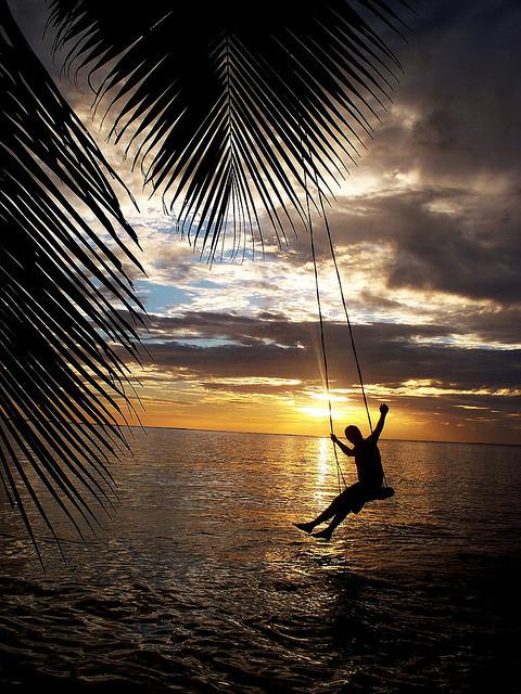 Palm tree swing above the sea at The Beach House, Fiji