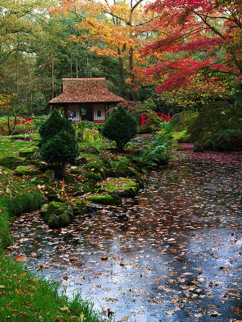 The Japanese garden at the Clingendael Estate, The Hague / Netherlands