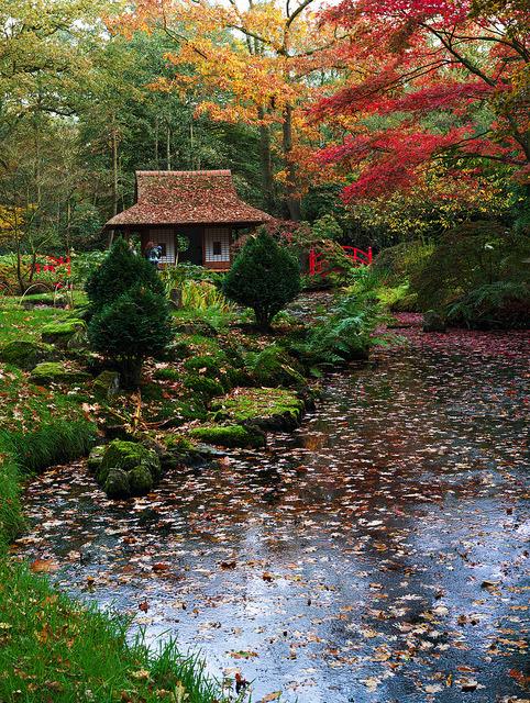 The Japanese garden at the Clingendael Estate, The Hague / Netherlands