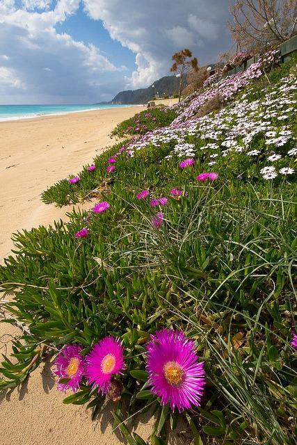 Lousta Vrachos Beach during spring time, Epirus / Greece