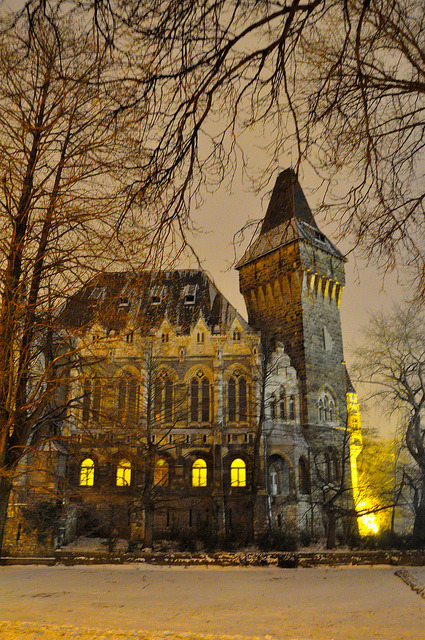 Winter nights at the castle, Budapest / Hungary
