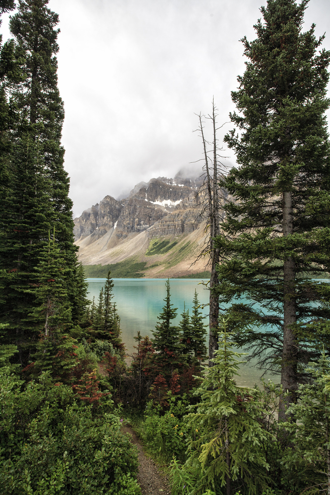 Bow Lake, Banff National Park / Canada